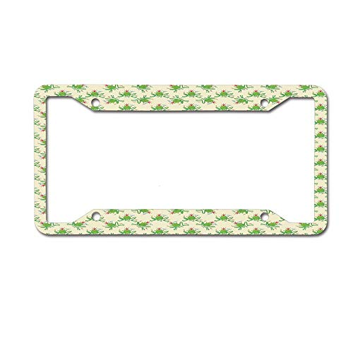 Jackie Prout ss Crazy Silly Cartoon Characters Surrounded by Colorful Dragonflies on Cream Backdrop License Plate Frame Aluminum Car Tag for US Canada Vehicles 4 Holes and Screws