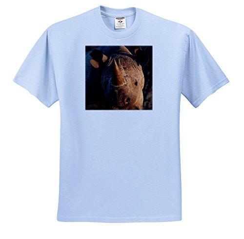 Africa Rhinoceros Horn - 3dRose Danita Delimont - Rhinos - Desert Black Rhinoceros Portrait, Kalahari Desert, Africa - T-Shirts - Toddler Light-Blue-T-Shirt (3T) (ts_276412_64)