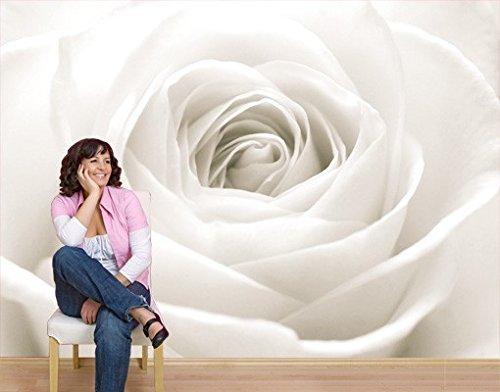Papiertapete - Fototapete No.40 'THE WHITE ROSE' 400x280cm Rosen Blumen , Größe:280cm x 400cm