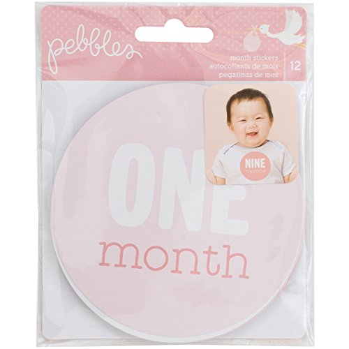 American Crafts Girl 12 Piece Monthly Stickers