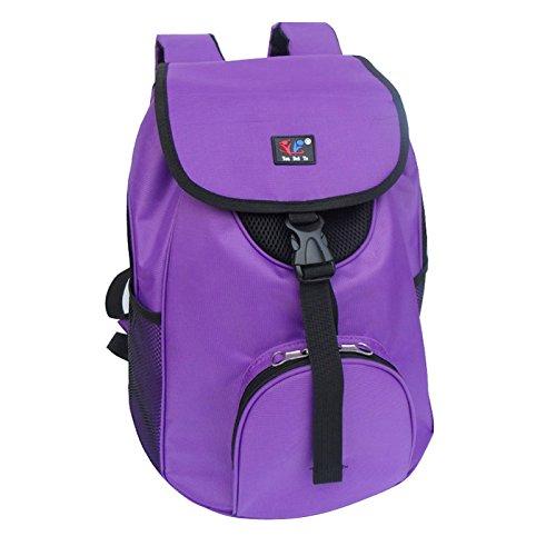 Aumenta el bolsa de mochila de bolsa de bolsa de mochila Portable Pet Cat Bao Taidi Mochilas, pink side pockets, long 35× wide 25.5× high 36cm purple side net material