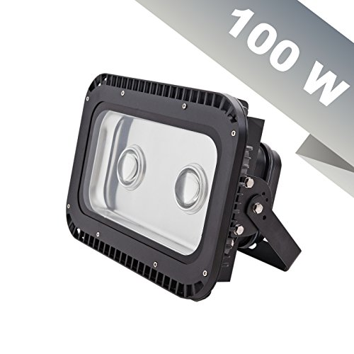 100W NLCO LED Industrial Grade Spot Light for Outdoors or...