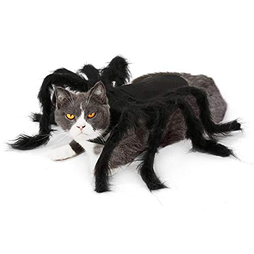 Spider Dress Up Costumes (MASCARE Halloween Pet Big Spider Costume Cat Funny Party Dress up)
