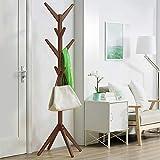 Soges Modern Free Standing Metal Coat Rack and Hat Hanger Display Hall Tree,Brown PKS-BS2029-C-CA