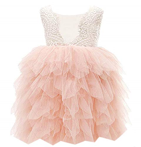 2Bunnies Girl Beaded Peony Lace Back A-Line Tiered Tutu Tulle Flower Girl Dress (Pink 5 Tier, 12 Months)