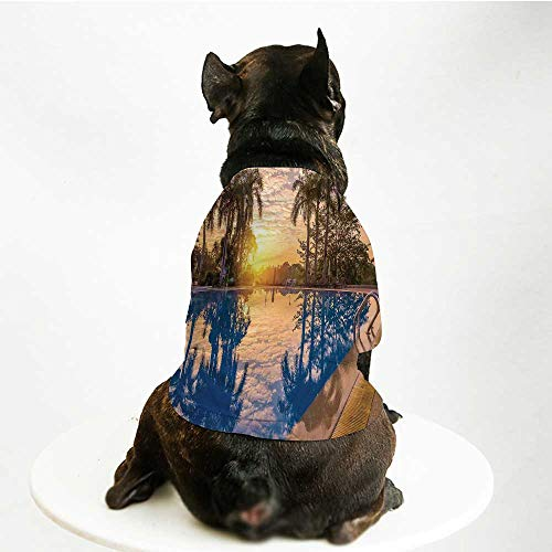 YOLIYANA House Decor Warm Pet Suit,Luxury Swimming Pool Reflexion in Morning Sunrise Modern Nature Cloudscape Sunshine for Pet Dogs,S ()
