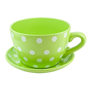 Ceramic Large Teacup & Saucer Planters - Green Polka: Amazon.co.uk ...