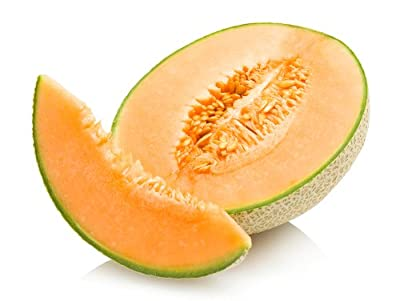 Edisto 47 - Cantaloupe Seeds