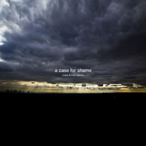 A Case For Shame (feat. Cold S...