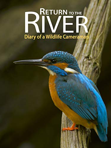 Return to the River - Diary of a Wildlife - Wild Willow