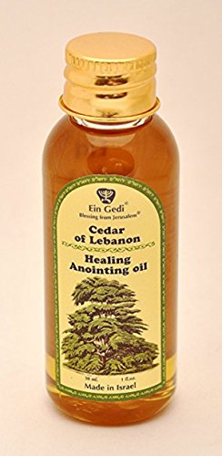Lebanon Anointing Oil - Bethlehem Gifts TM Ein Gedi Assorted Holy Land Scented Anointing Oils by (Cedar of Lebanon Healing, 60ml)