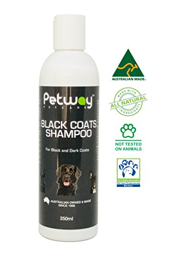 PETWAY Petcare Black Coat Shampoo - Natural Pet Shampoo for Animals with Black or Dark Coats, pH Balanced Biodegradable Dog Shampoo,  Free of Phosphates, Parabens & Enzymes - 250ml