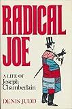 Radical Joe, David Judd, 0241896312