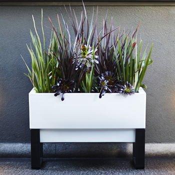 Perfect for Balconies, Courtyards, Decks, and Patios Glowpear™ Urban Garden Self-watering Planter by GlowPear