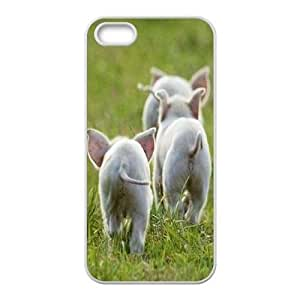 Customized pig Iphone 5,5S Phone Case, pig Personalized Hard Back Cover Case for iPhone 5,iPhone 5s at Lzzcase
