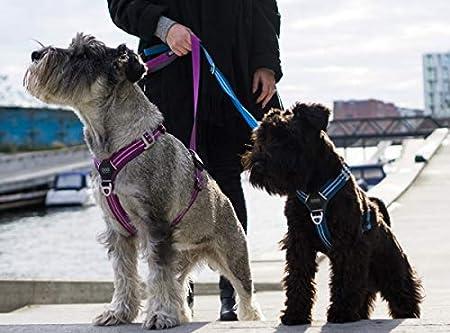 DOG Copenhagen Comfort Walk Air Harness Black WH-BL Talla S ...