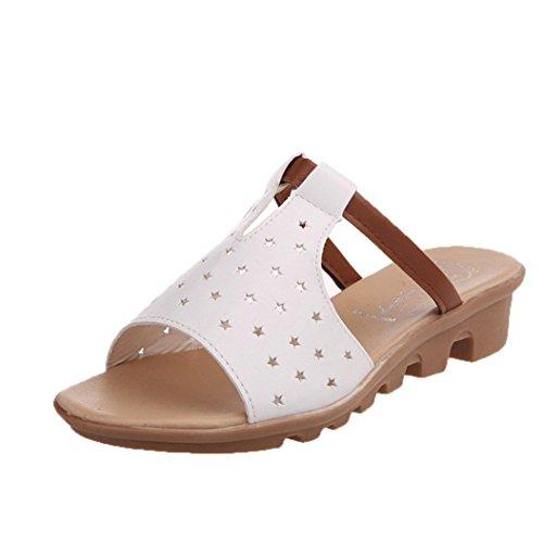 bescita Frauen Hausschuhe Weiblich Sandalen Fashion Solid Sommerstrand gleitet Schuhe (36, Weiße)