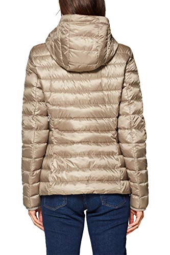 240 Jacket Brown Woman Esprit taupe For FnagqFwA
