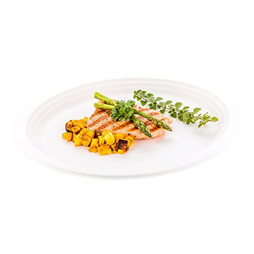 Bagasse Large Oval Plate, Dinner Plate - 12.5