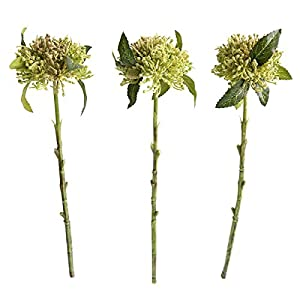 Jasming Pack of 3 Artificial Flowers Chrysanthemum Ball 17 Inch Faux Dusty Green Plastic Plant Arrangement Craft Supplies For Crown centerpieces Wedding DIY Materials 17