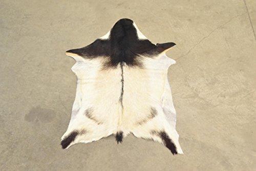 Leather hide Hair-on Med Goatskin 18