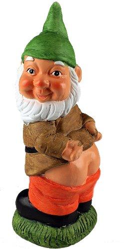 5b5d62546aa Cheeky Mooning Garden Gnome Ornament (Green Hat)  Amazon.co.uk ...