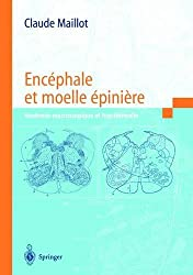 Encéphale et moelle épinière: Anatomie macroscopique et fonctionnelle (French Edition)