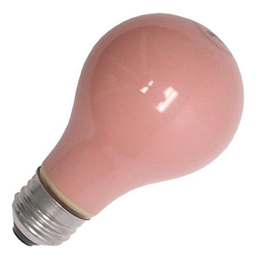 60 watt soft pink bulbs - 6