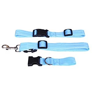 Tianyu Adjustable Hands Free Leash Dog Lead with Waist Belt for Jogging Walking Running Purple Click on image for further info.