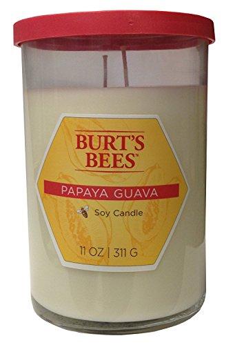 Blyth Home Scents International 111208 Burt'S Bees Papaya Guava Tall Jar Candle, white, coral, pink