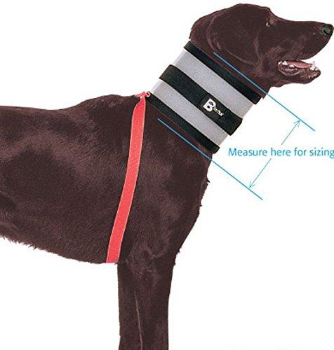 """BiteNot Collar, 6"""" W x 27"""" L"""