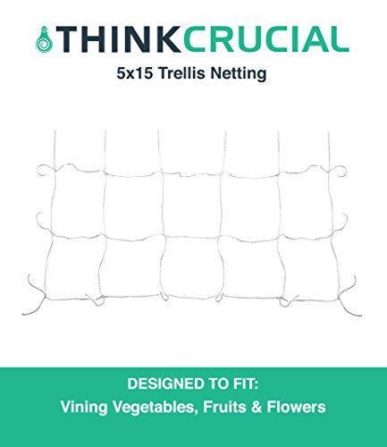 Durable 5' x 15' Heavy Duty Nylon Trellis Vine Heavy Duty Netting, Perfect for Gardening Fruits, Vegetables, Plants & More, Maximum Durability, by Think Crucial (Support Netting Plant)