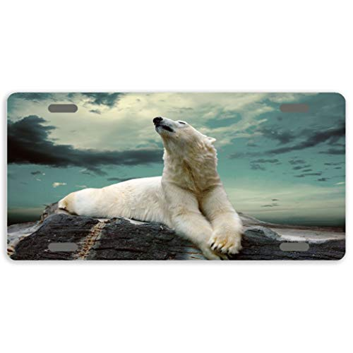 Eprocase Metal License Plate Tag White Polar Bear License Plate Cover Novelty Tag Aluminum Decorative Car Tag Sign Auto Tag Front License Plate 4 Holes (12