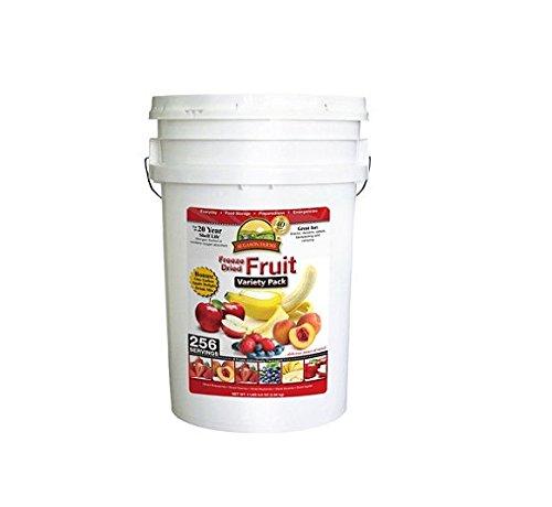 Augason Farms Freeze Dried Fruit Variety Pack - 4 lb., 9.6 oz. Pail by Augason Farms