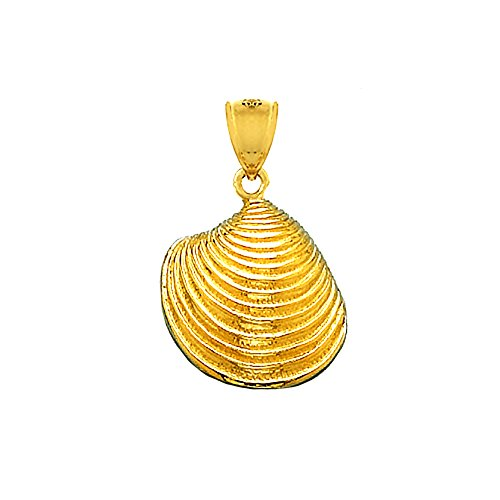 14k Gold Clamshell - 7