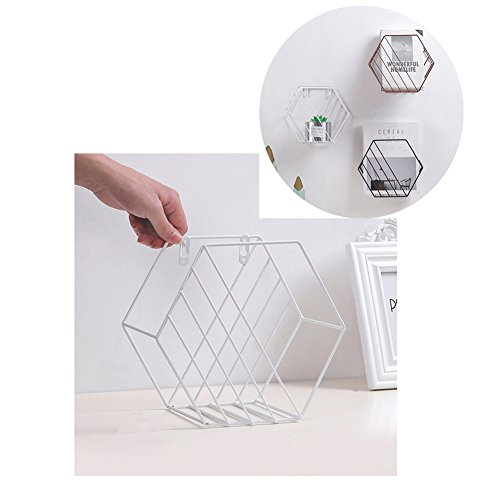 Wall Mounted Metal Grid Rack Storage Shelf, Metal Wire Basket Metal Grid Floating Shelves Iron Hexagonal Grid Wall Rack Wall Hanging Geometric Shelf Decorative Newspaper Rack (White)