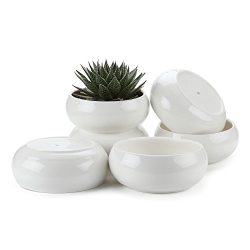 JynXos 6.5 Inch Ceramic White Round Simple Design succulent Plant Pot/Cactus Plant Pot Flower Pot/Container/Planter Package 1 Pack of 6 by JynXos
