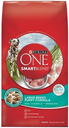 Purina ONE SmartBlend Large Breed Puppy Formula Premium Dog Food 31.1 lb. Bag