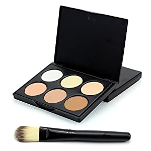 Pure Vie Pro 1 Pcs Make Up Brush + 6 Colors Cream Foundation Concealer Camouflage Makeup Palette Contouring Kit