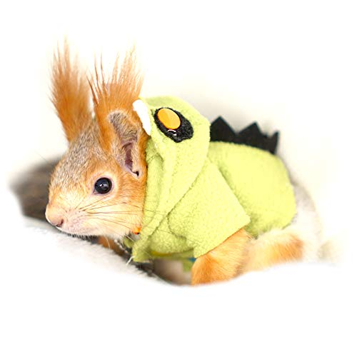 PETLOCA Squirrel Costumes Pet Squirrel Ferret Clothes Cute Beautiful Holiday Photo Keep Warm Squirrel Leash Handmade Little Monster Costume L Green -