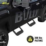 Bully BBS-1103 Universal Truck Black Powder