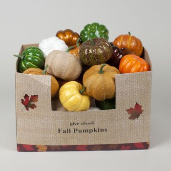 Prayer In C Costume (Set of 6 Fall Harvest Artificial Pumpkins (3.5 Inch) in Assorted Colors!)
