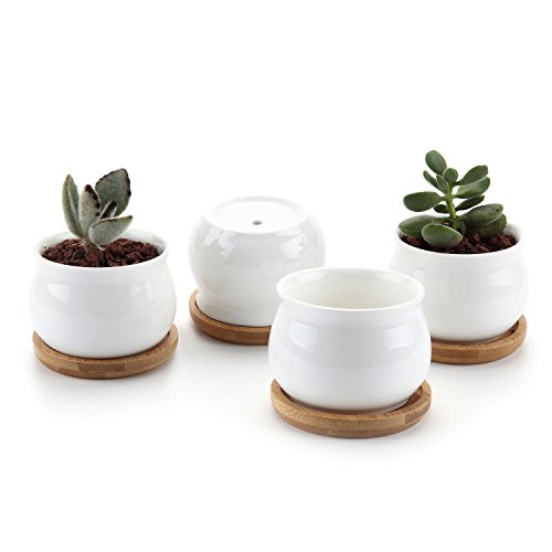 T4U 2.75 Inch Ceramic Pot White, Jar Shape Planter Container Succulent Cactus Plant Flower Pot with FREE Bamboo Tray Christmas Gift Package 1 Pack of 4