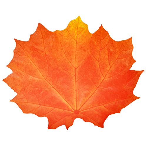 """Gift Boutique Paper Harvest Leaf Placemats 36 Pack Orange Color Thanksgiving Autumn Maple Leaves Shaped Chargers Place Mats 12"""" x 16"""" Fall Turkey Crafts Dinner Party Table Decorations"""