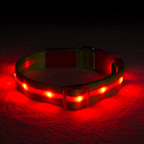 Blazin' Safety LED Dog Collar – USB Rechargeable with Water Resistant Flashing Light – Medium Christmas ()