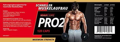 Maxcore Pro2 und Alpha No2 by VargPower   Testo Pump Booster   Pre Workout   240 Kapseln   Extreme   Nahrungsergänzungsmittel Bodybuildern
