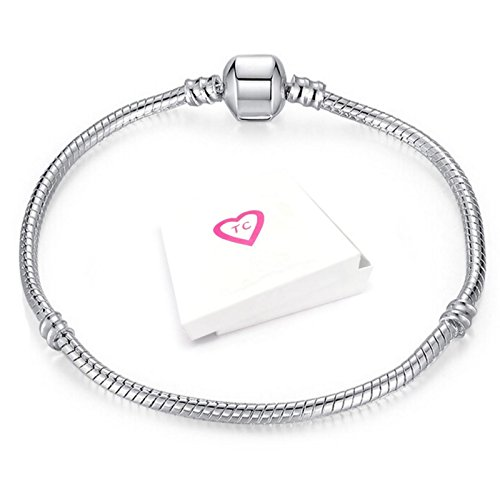 Silver Charm Bracelet for European Style Charms Gift Boxed By Truly Charming (20)