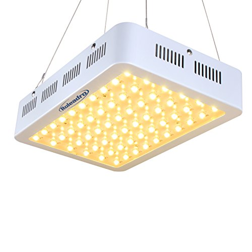 Will White Led Lights Grow Plants