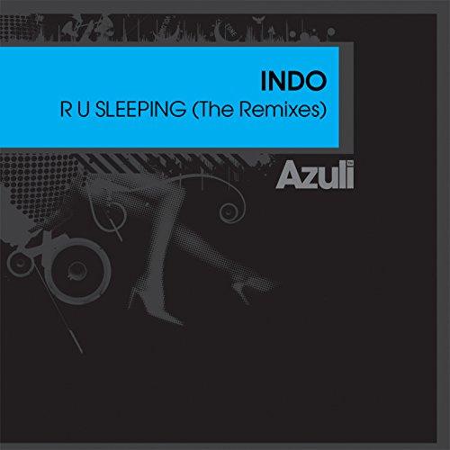 R U Sleeping (Bump 'N' Flex Remix)