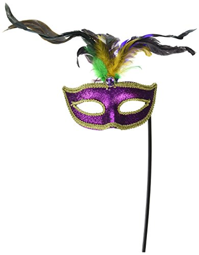 Beistle 57066 Feathered Mask with Stick -